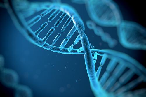 6145777043e373 Diabète et intervention du patrimoine génétique